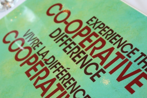 Alt-Institutions-300x200